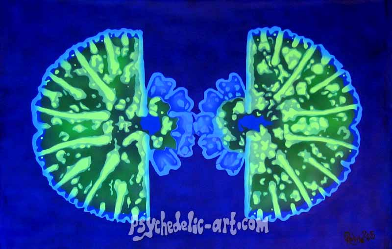 "066 ""Zone 4 (Cell Division - Stage 2)"", 2005, 120 x 165cm, Acrylic on canvas"
